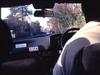 marloe_taxi1_syukusyou