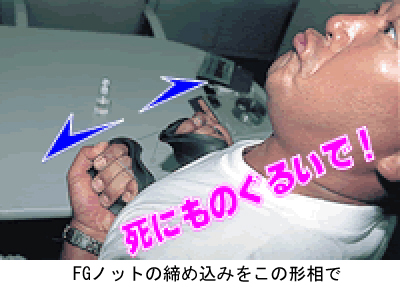 Shinimonoguruism_3