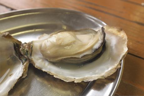 豊前海一粒牡蠣